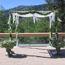 New Custom Arch with fabric Chuppah Style