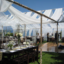 This is a tent without the vinyl top and we have added taffetta swags to a very trendy look